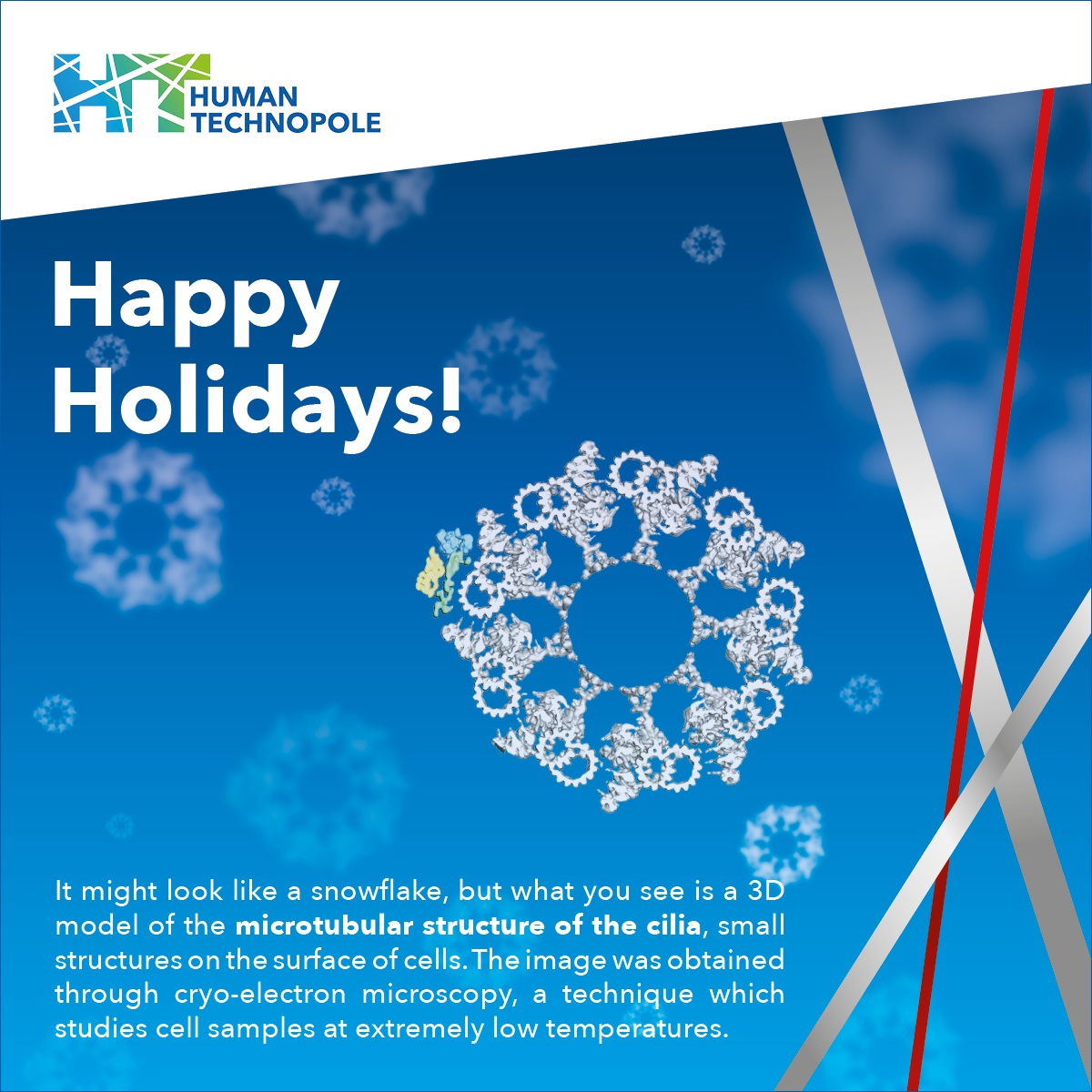 Happy holidays from Human Technopole!
