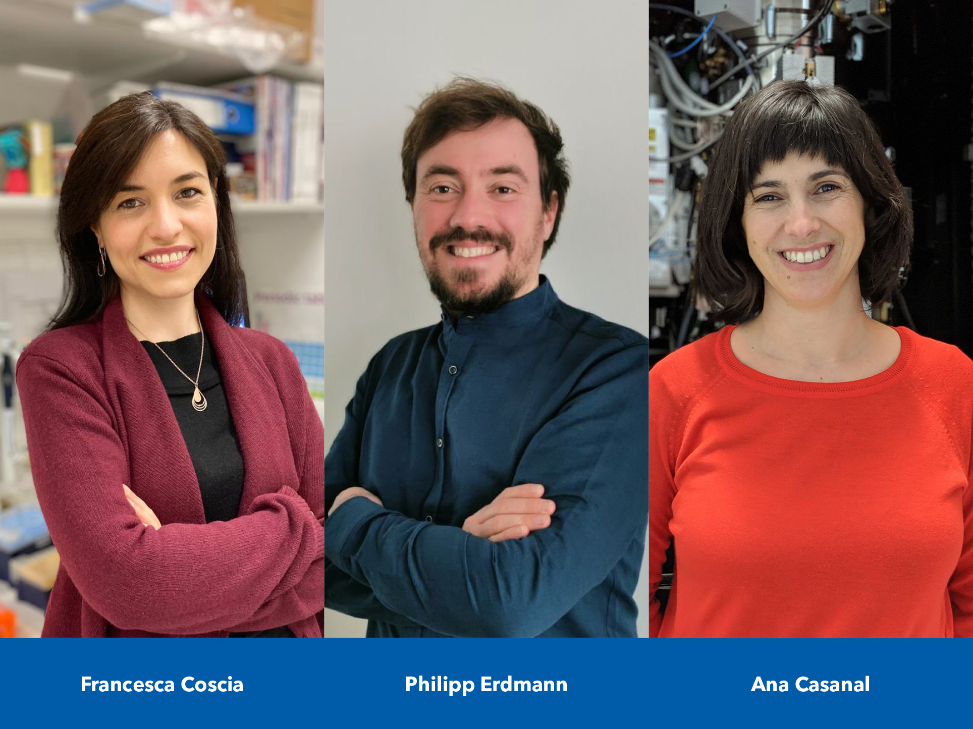 New Group Leaders in Structural Biology
